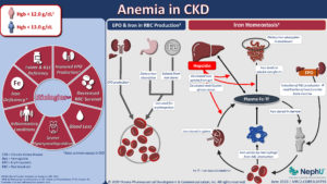 Anemia In CKD